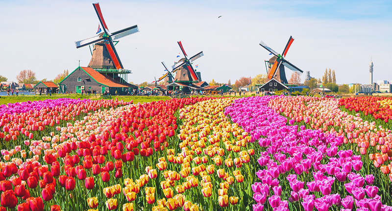 Junggesellenabschied in Amsterdam