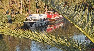Le Boat Boot Vision hinter Palmen