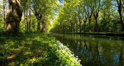 Canal du Rhône au Rhin nahe Straßburg