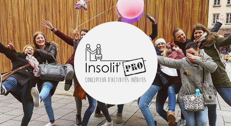 Insolit Pro